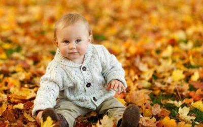 Berceau finlandais, le lit bébé tendance