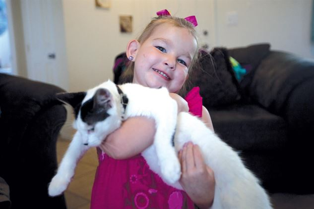 la cohabitation entre le chat et l'enfant peut très bien se passer